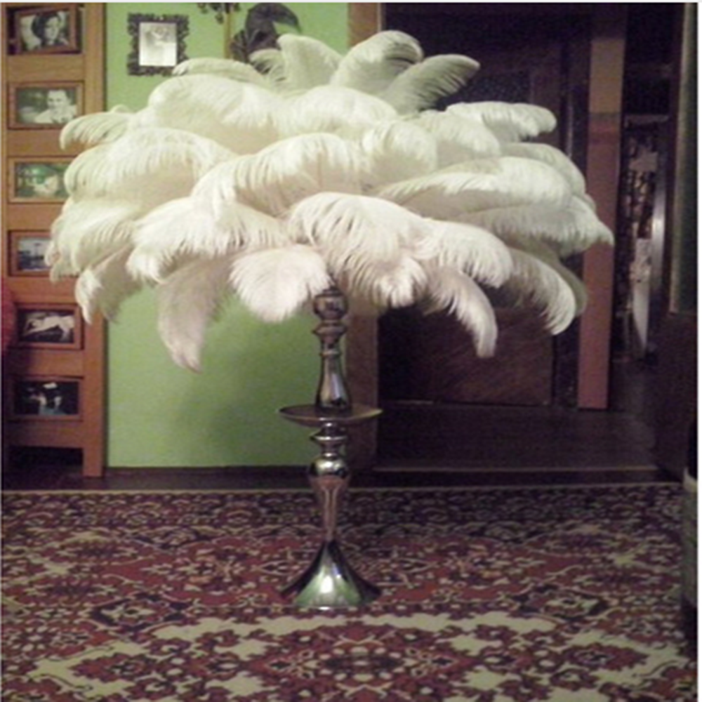 Image Result For Ostrich Feather Lamp Feather