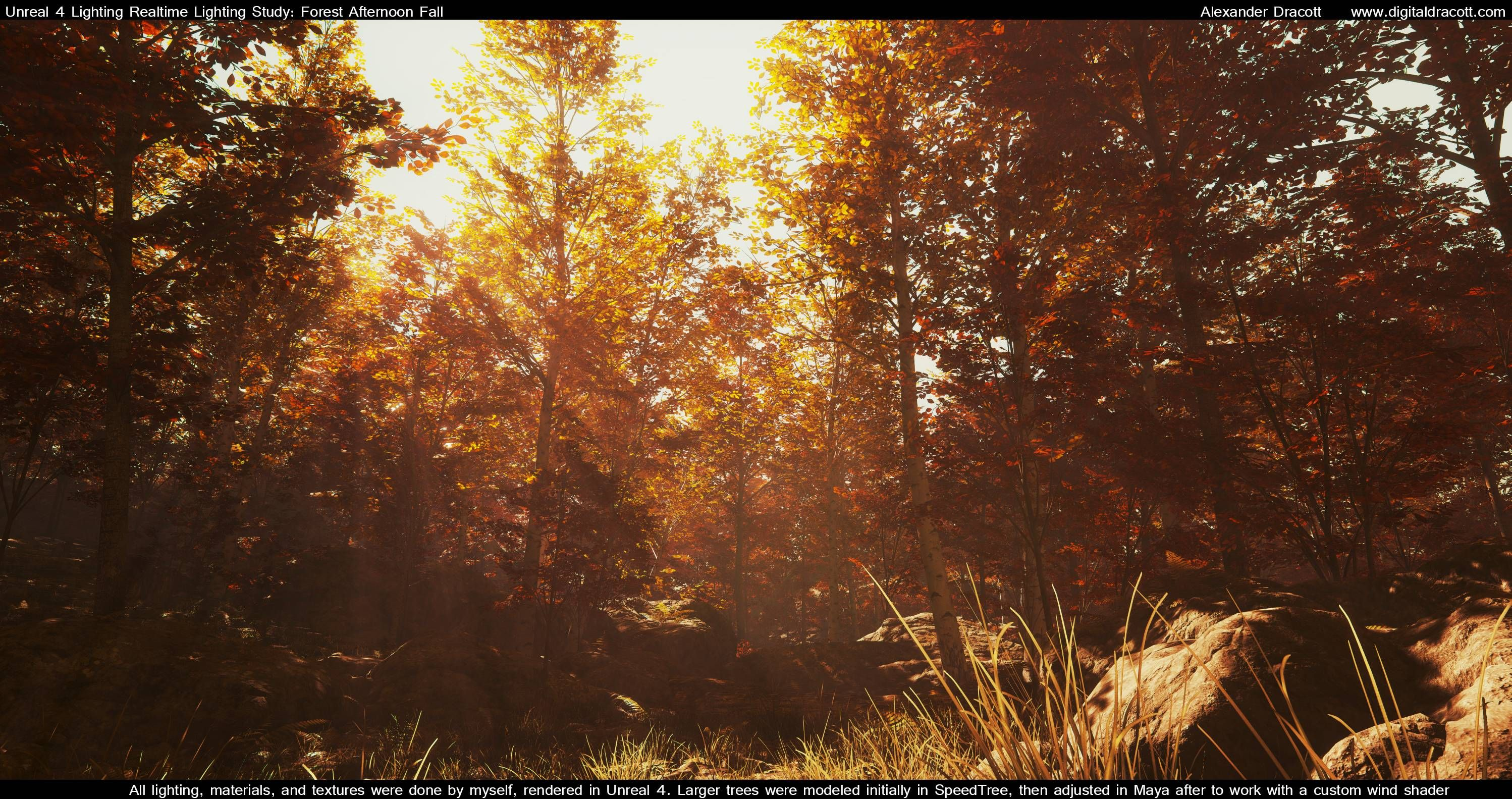 Forest Lighting study - Polycount Forum | Game Art - Enviro - Realistic - Foliage | Pinterest | Unreal engine Environment and Folk & Forest Lighting study - Polycount Forum | Game Art - Enviro ...
