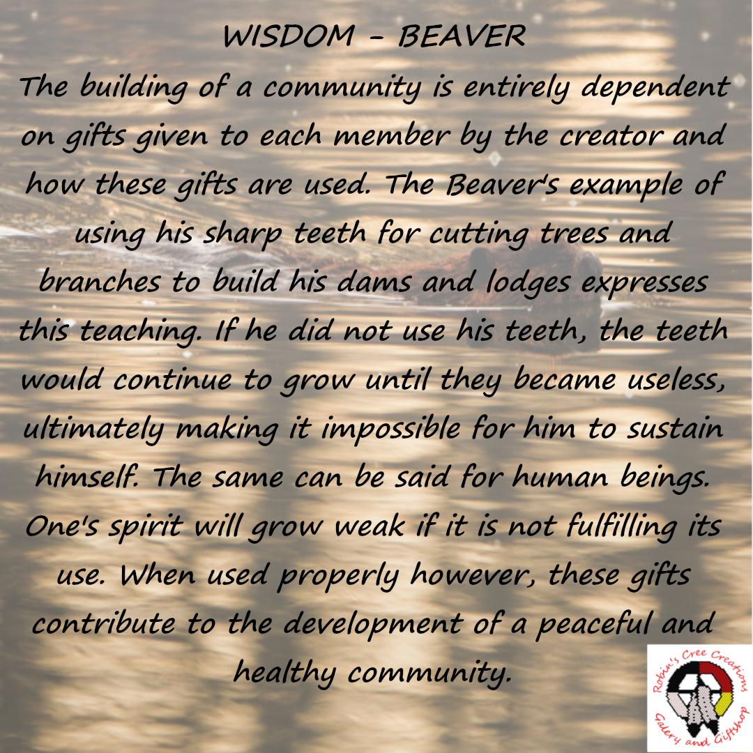 The Seven Sacred Teachings Wisdom