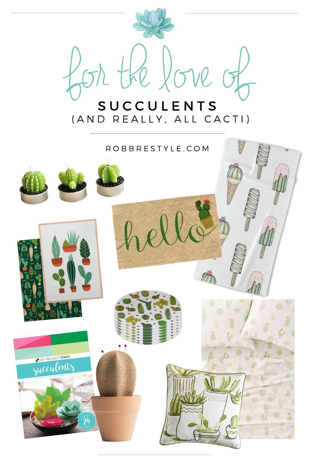 For the Love of Succulents (and really, all cacti | Cacti, Funky ...