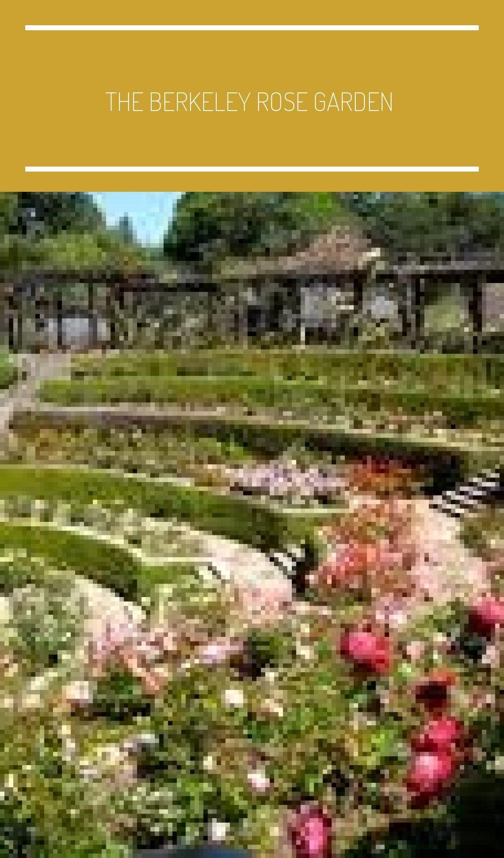 The Berkeley Rose Garden Deco Garden Design Garden Layout Feng Shui Garden Rose Garden