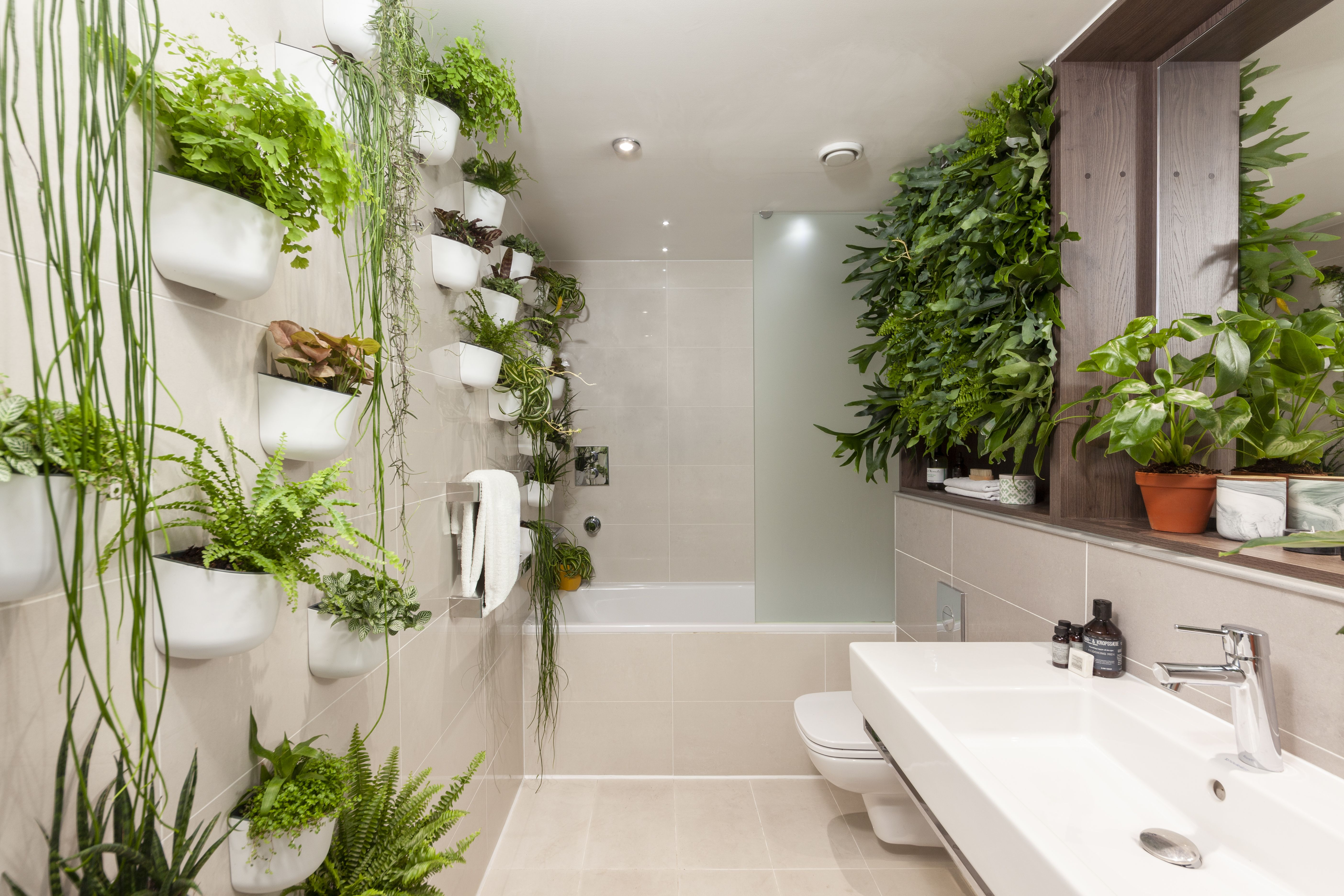 INTRODUCING THE UK'S FIRST JUNGLE HOTEL SUITES   Jungle bathroom ...