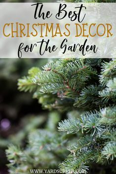 Christmas is the perfect season to showcase your creativity and show off the beautiful garden that youve been working on since the beginning of the year.Decorating the yard for Christmas is one of the most exciting things to do during this festive season.  #christmasseason #christmasdecor #christmasyard #yardsurfer #decoration #christmas #holidayinspo #holidays #christmasinspo #christmasfeels #christmashome #homedecor #homedesign