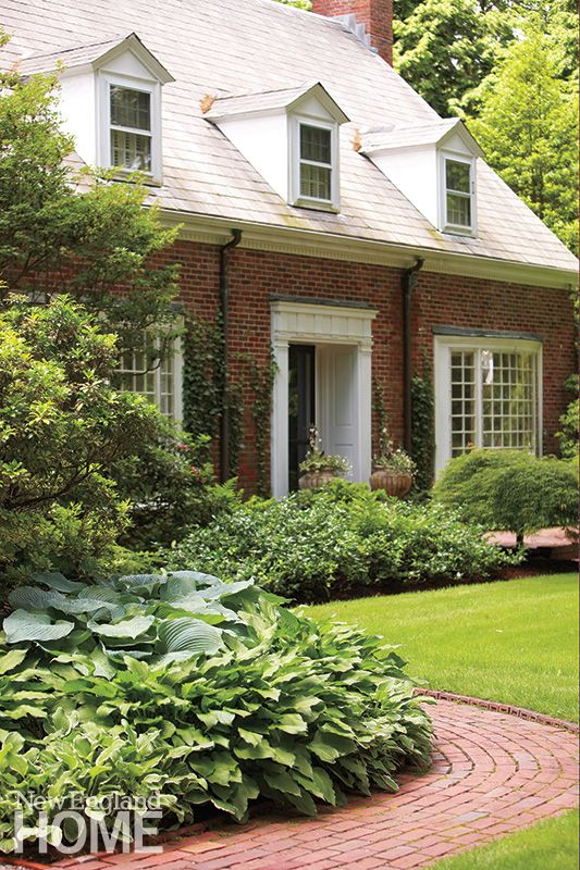 Romancing The Cape With Images Front Yard Landscaping Simple