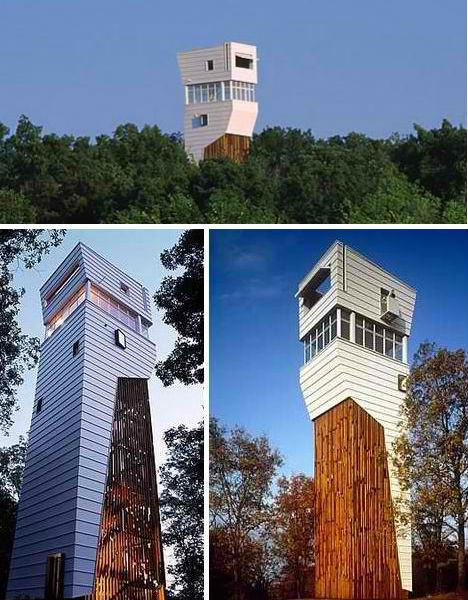 Poking up above the tree canopy, this modern tower home doesn\'t ...