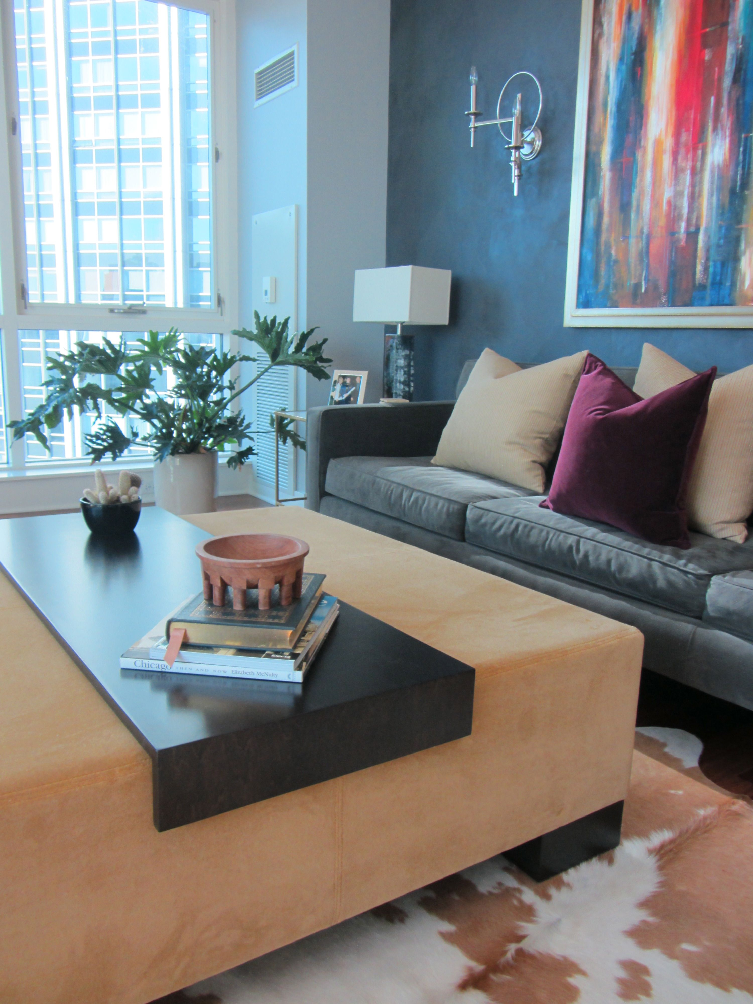 Love This Ottoman / Coffee Table! Dual Purpose In A Chicago High Rise   By  Lisa Wolfe Design