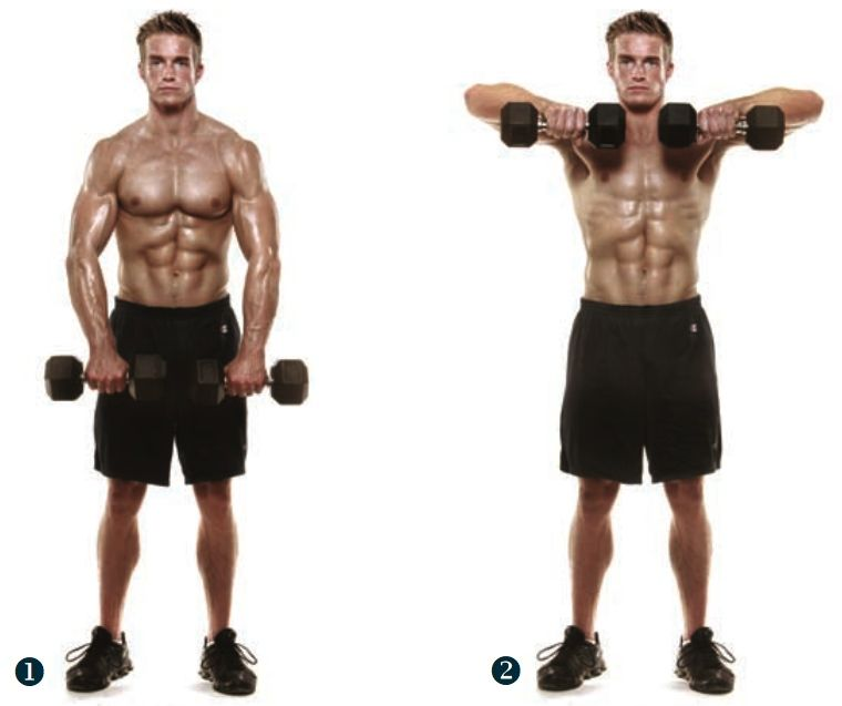 dumbell upright row - 4 sets - increasing weight as you ...