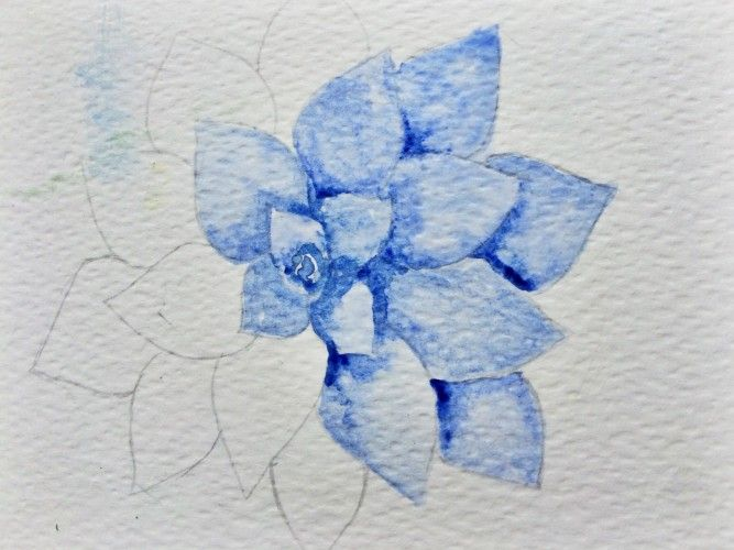 Watercolor Succulent Tutorial Part 1 Watercolor Pencil Art