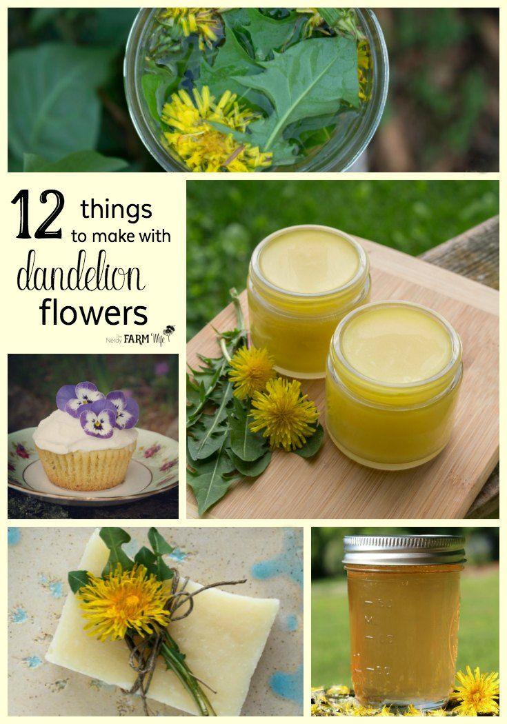 12 Things To Make With Dandelion Flowers Herbalism Dandelion Recipes Dandelion Oil
