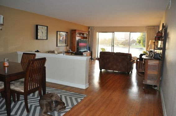 Should Living Room And Dining Area Rugs Match