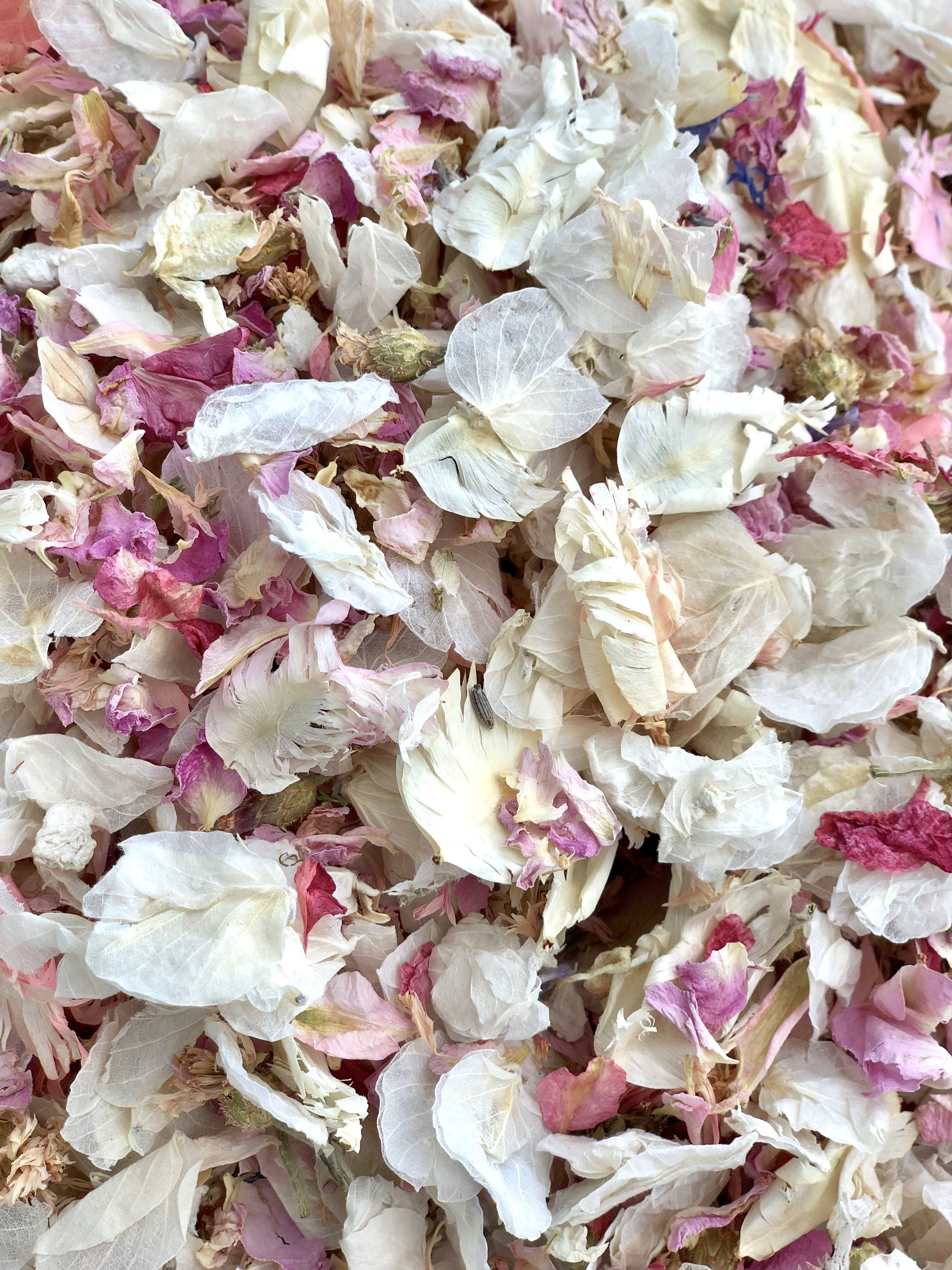 Ivory, Pink and Lilac Confetti Petals  Biodegradable and