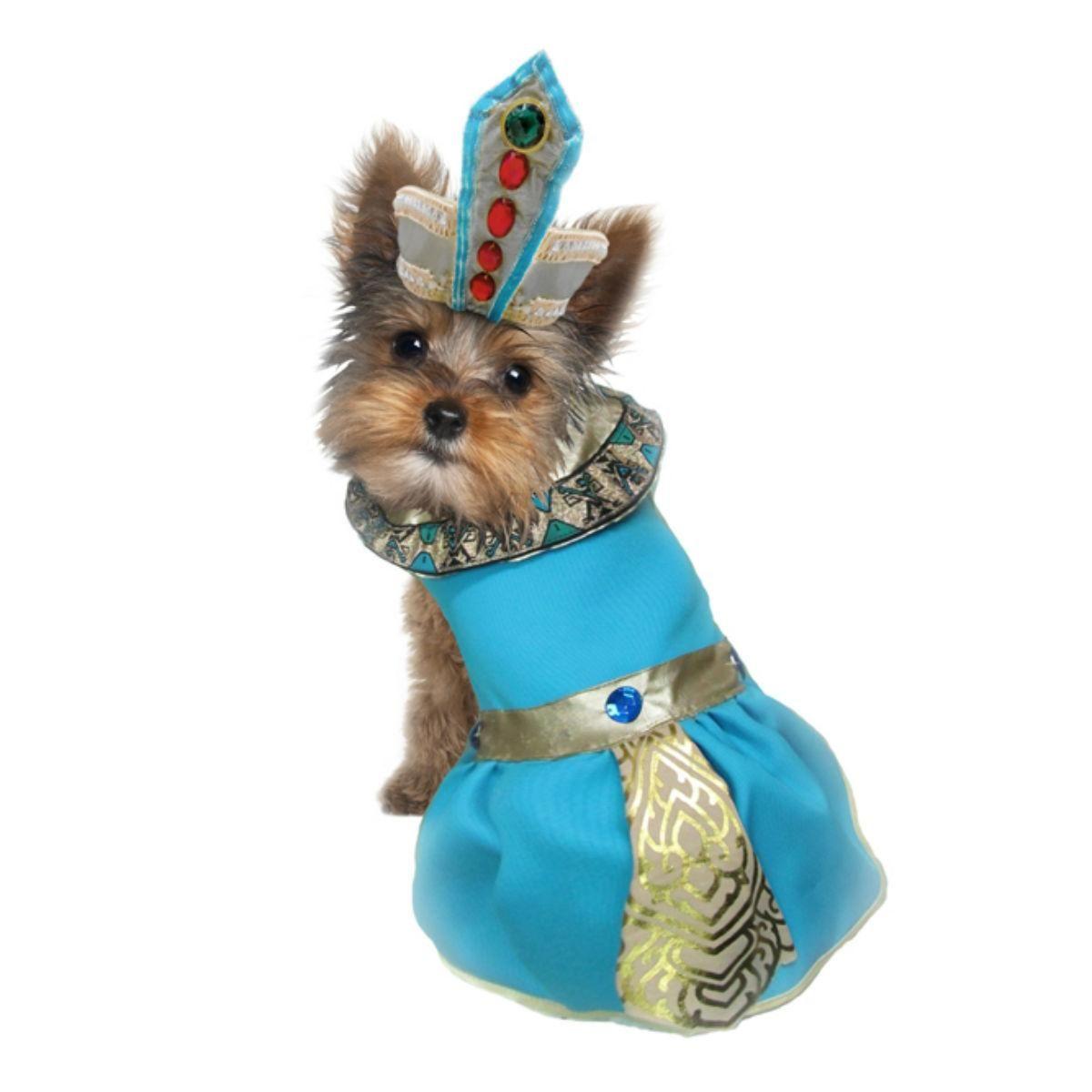 Cleopatra dog costume blue dog halloween costumes dog