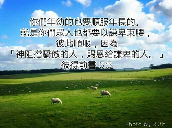 Image result for 彼前5:5