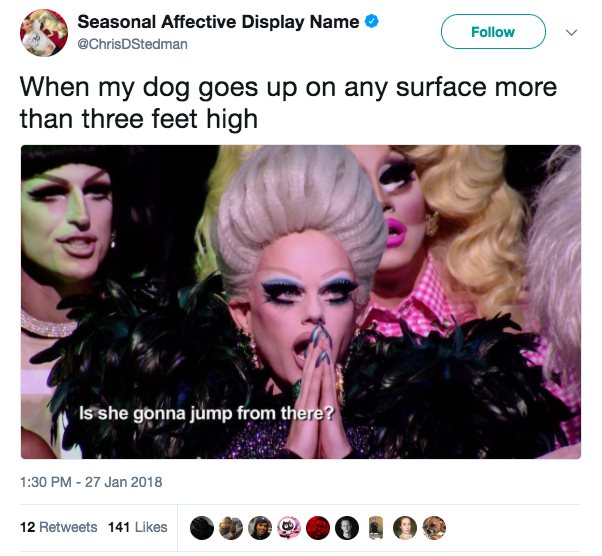 This Rupaul S Drag Race All Stars 3 Meme Is The Absolute Best