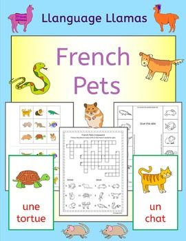 french pets fun activities puzzles and bingo french worksheets french words and flip books. Black Bedroom Furniture Sets. Home Design Ideas