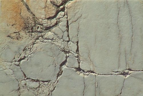 2799198310 2ec68d42db Jpg 500 337 Broken Marble Texture Roman Statue Greek Statues Mermaid Statues