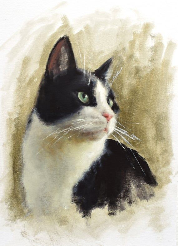 Black And White Cat Original Oil Painting Cat Lover Gifts Etsy