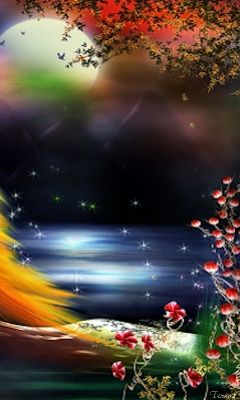 Download 240x400 Dream Night Cell Phone Wallpaper Category