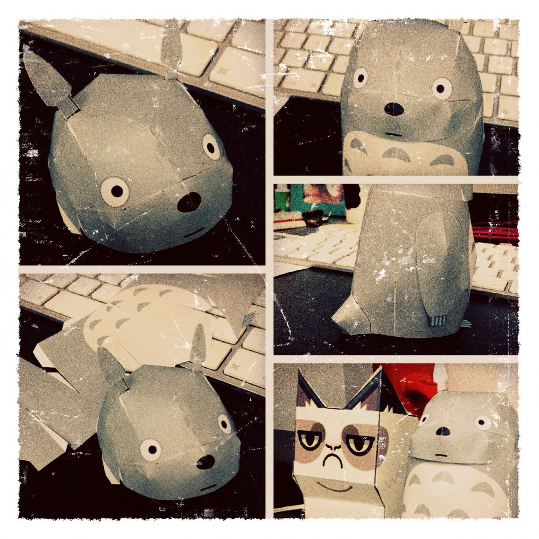 Totoro meets grumpy cat & it's EPIC!!!