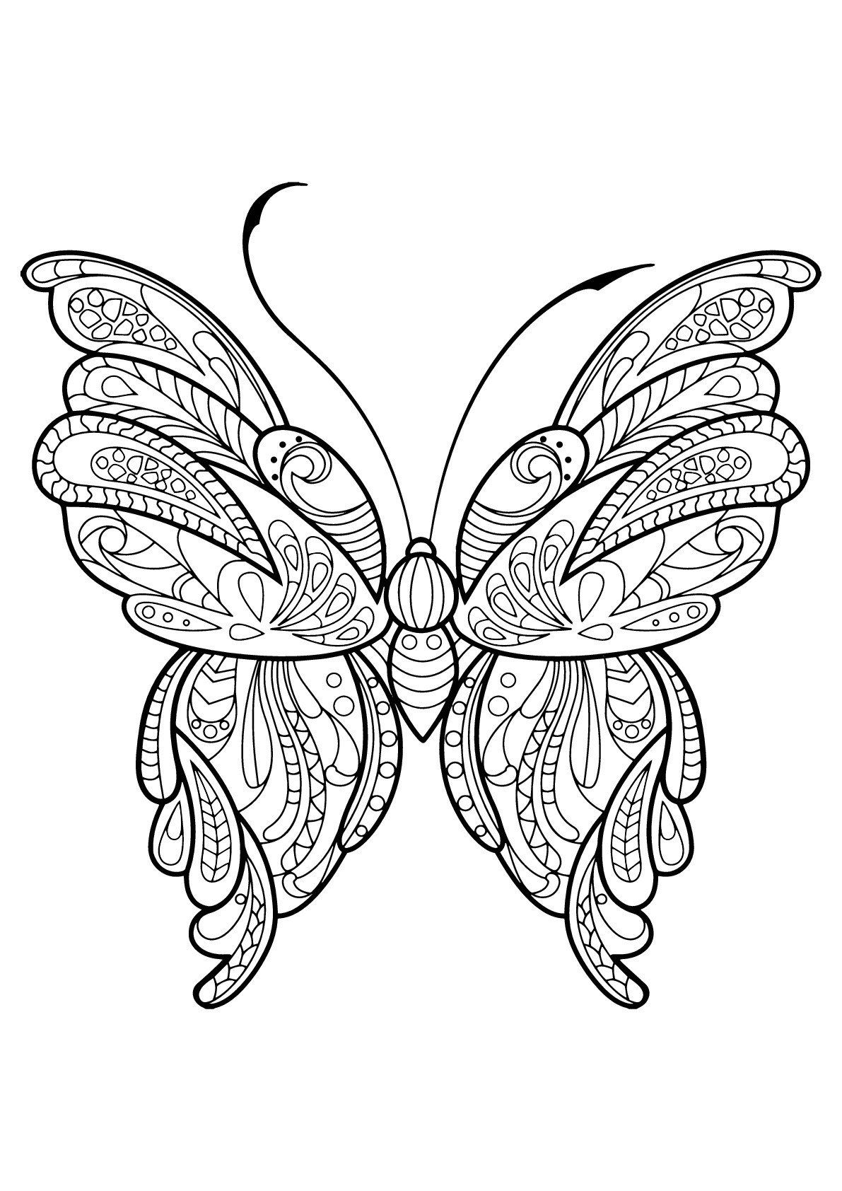 Butterfly Coloring Pages For Kids Coloring Pages Butterflies Free To Color For Kids Butterfly Coloring Page Butterfly Pictures To Color Animal Coloring Pages [ 1684 x 1191 Pixel ]
