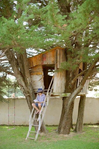 Construire Cabane Dans Les Arbres : construire, cabane, arbres, Cabane, Perchée, Arbres, Arbres,, Cabane,, Jardin