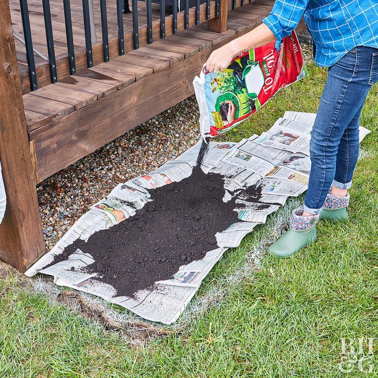 Yes, You Can Build a Flowerbed Without Digging Flower