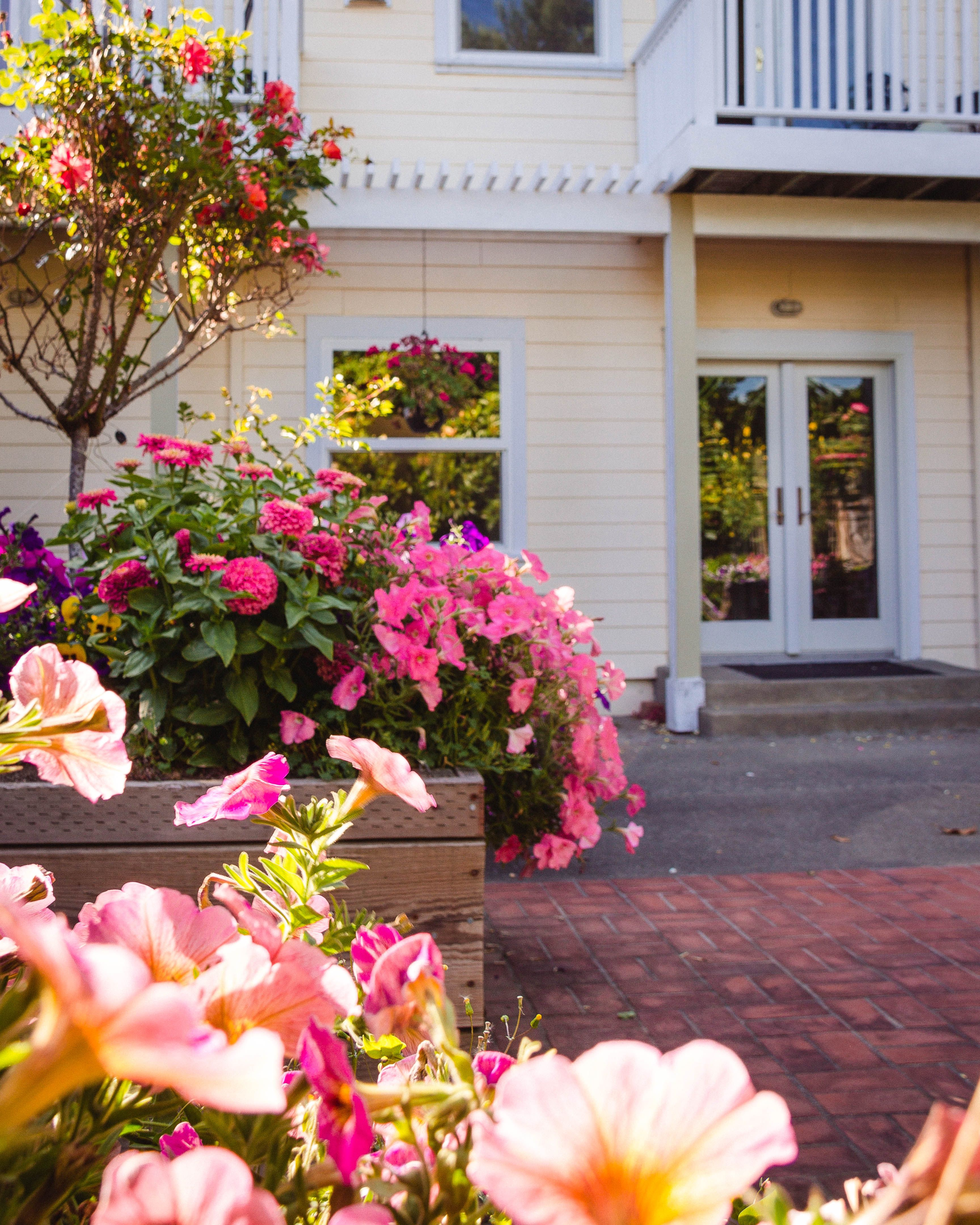 Leave Your Car And Walk To Town From Point Reyes Station Inn