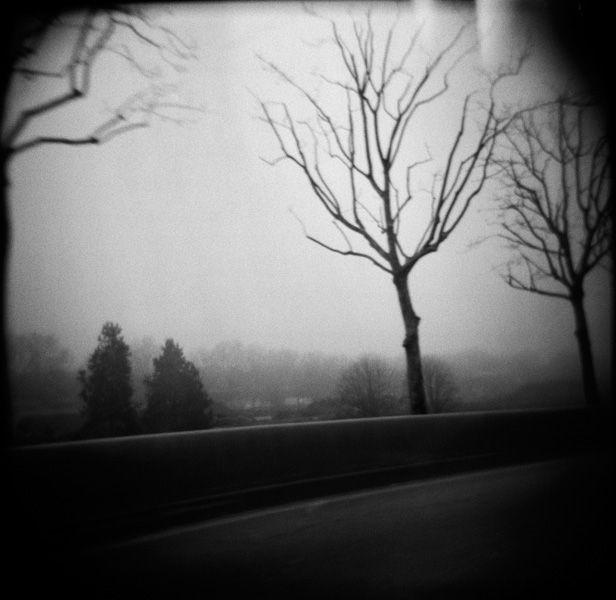 La clôture : laurent chardon photographie
