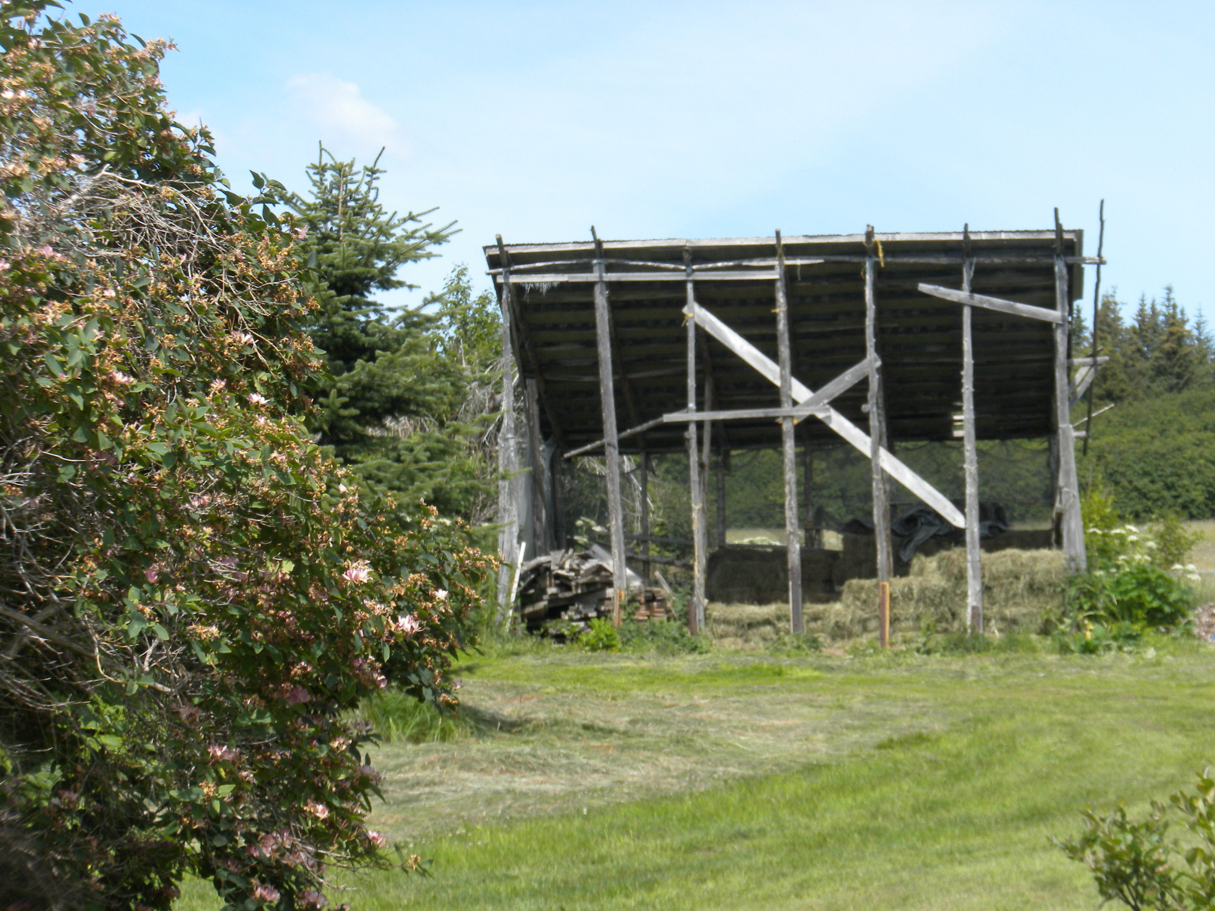 Hay Storage Shed On The Kilcher Homestead