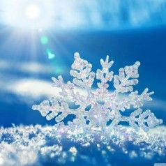 Stay warm and save energy this winter winter wallpaper - Temperature to keep house in winter ...