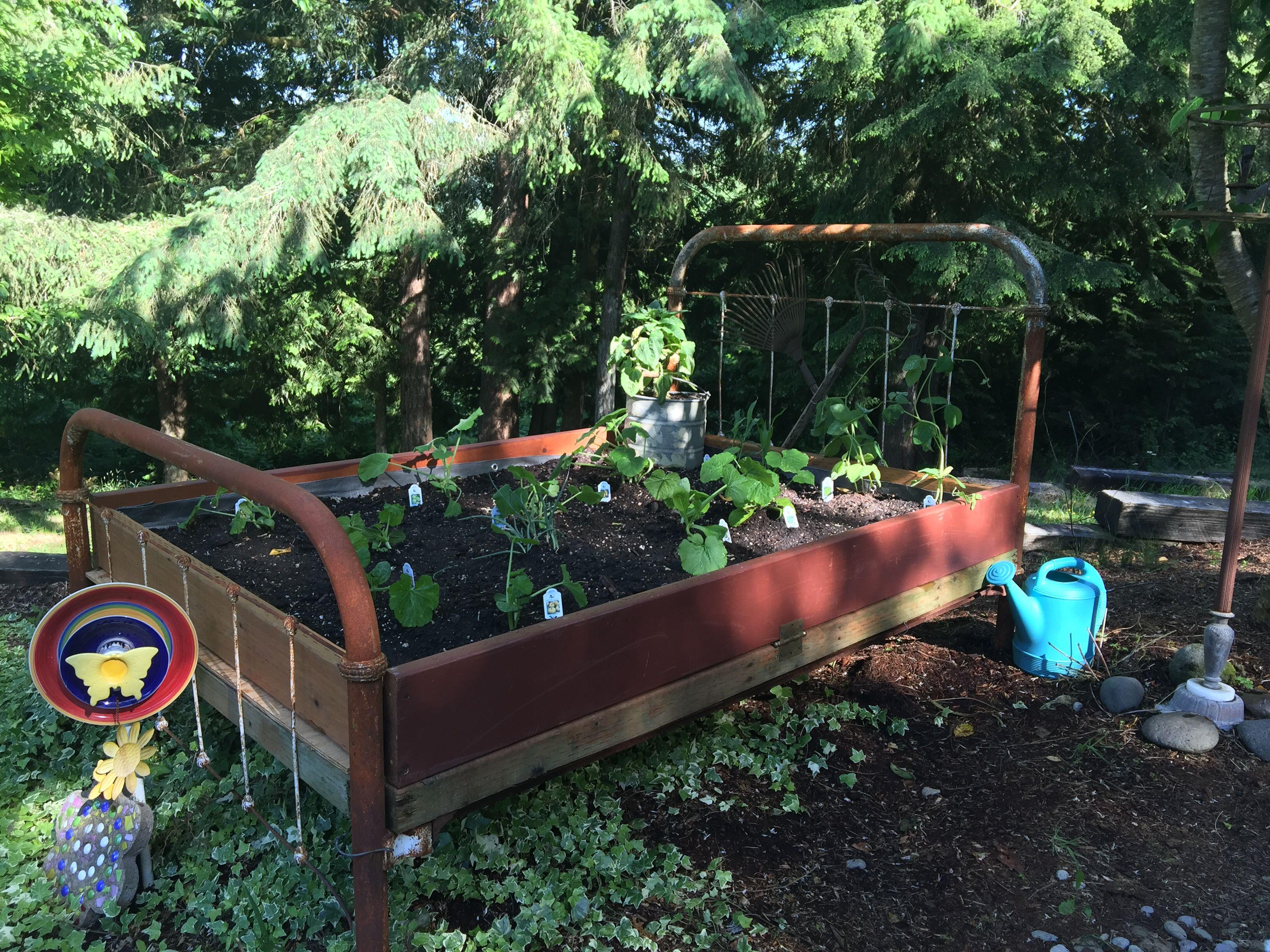 My Garden Bed