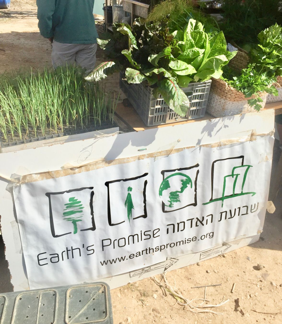 Beer Sheva Israel Map%0A Fresh and organic produce from urban farm in Beer Sheva  Israel