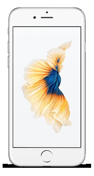 cellphonereward Apple iphone 6s, Iphone 6s gold, Iphone