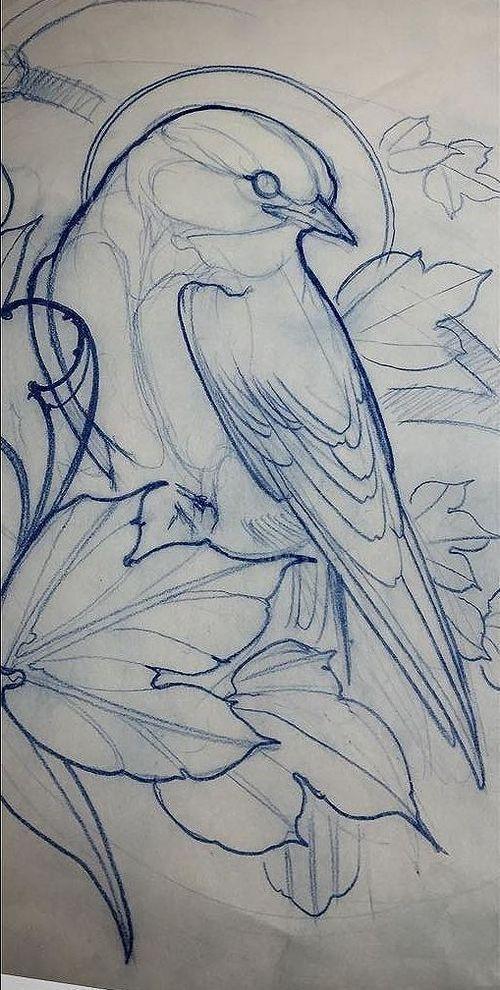 Bird Tattoo Design Bird Drawings Drawings Bird Art
