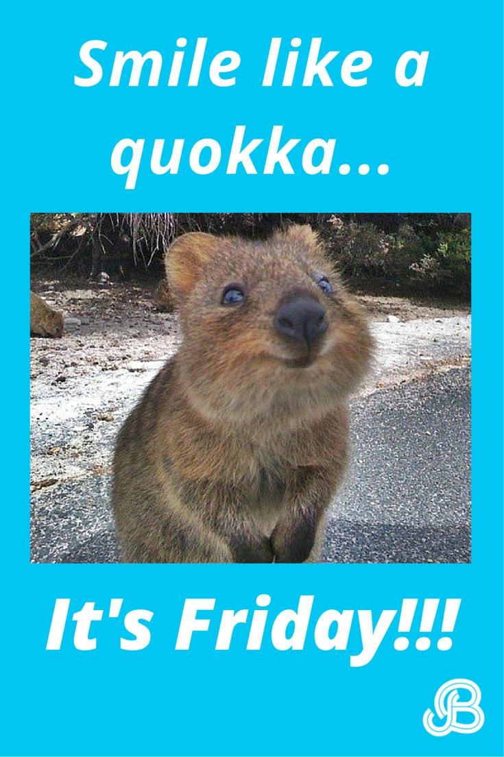 Smile like a quokka. It's Friday! #tgif #friday #memes #quokkas ...