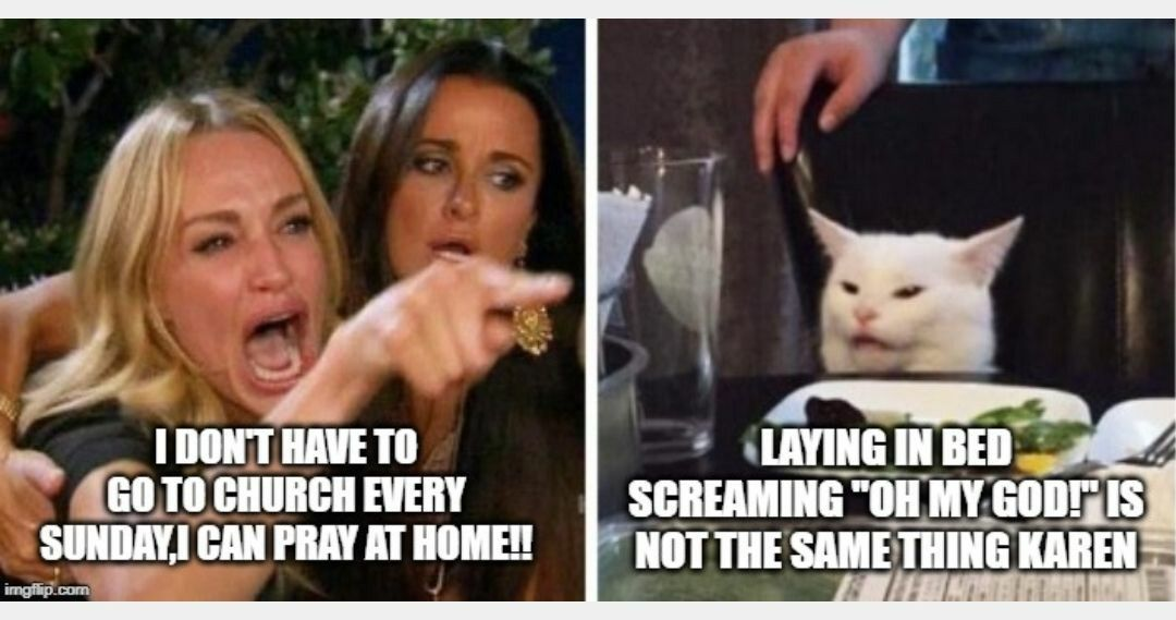 Pin By Stephanie Andrus On Smudge The Cat Memes In 2020 Smudging Humor Funny Cat Memes