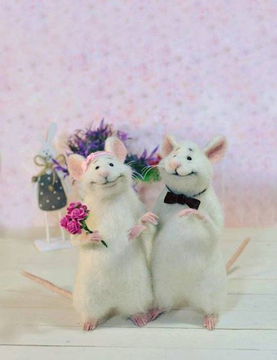 Wedding mice Сouple mice White mice Mice in love Cute mice Pair of