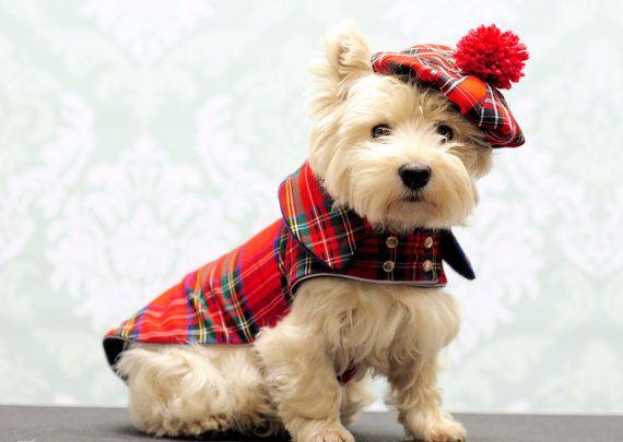 Tartan Dog Coats Canada