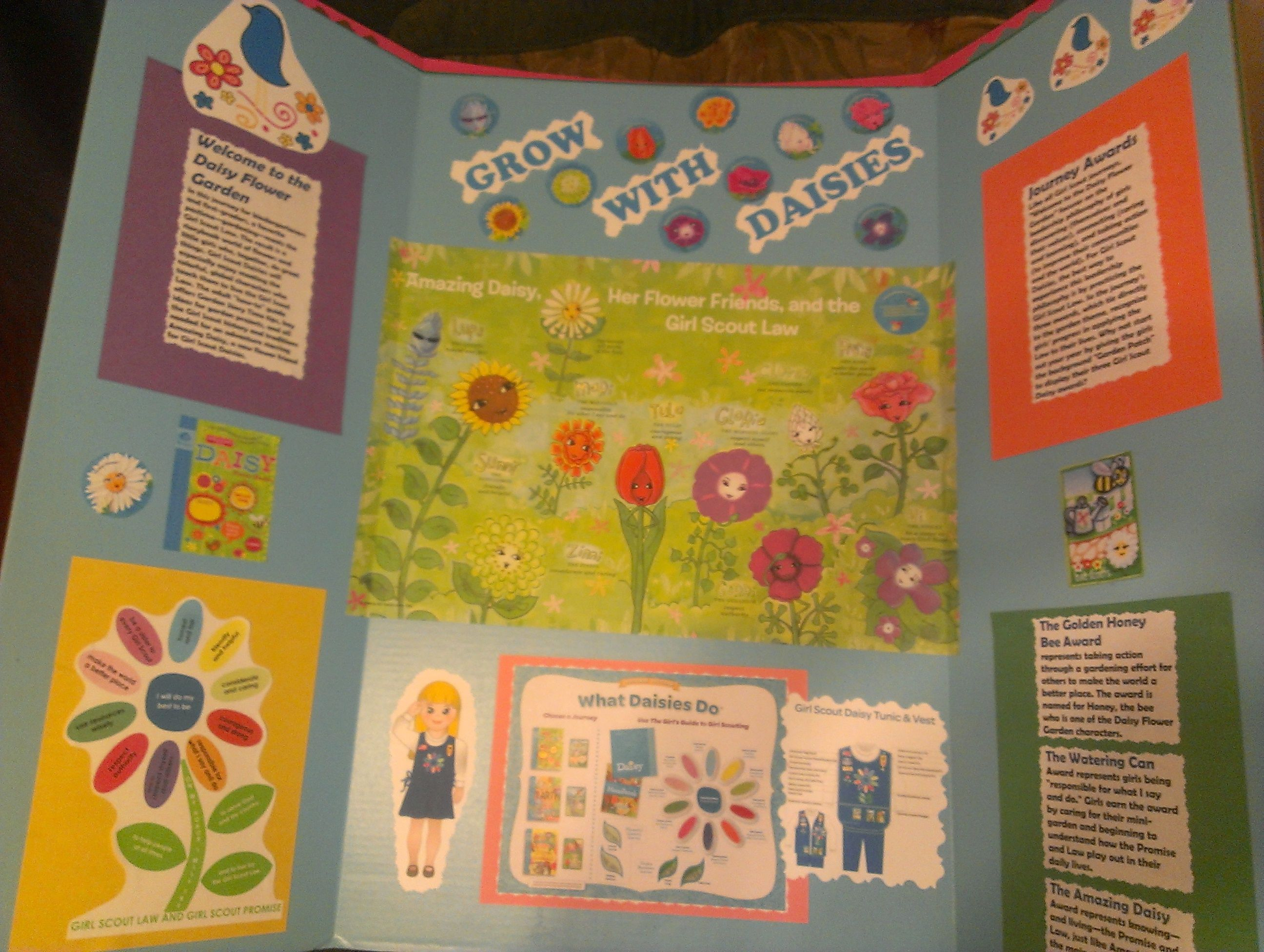A fold out blue cardboard presentation board with all daisy info a fold out blue cardboard presentation board with all daisy info including the promise law the map from the its your world chang it journey izmirmasajfo