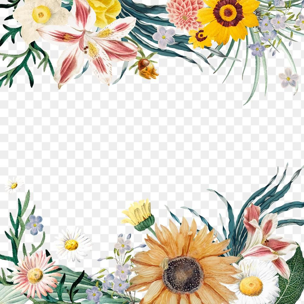 Summer Bloom Floral Border Png Free Image By Rawpixel Com Sasi Flower Border Png Floral Border Flower Border