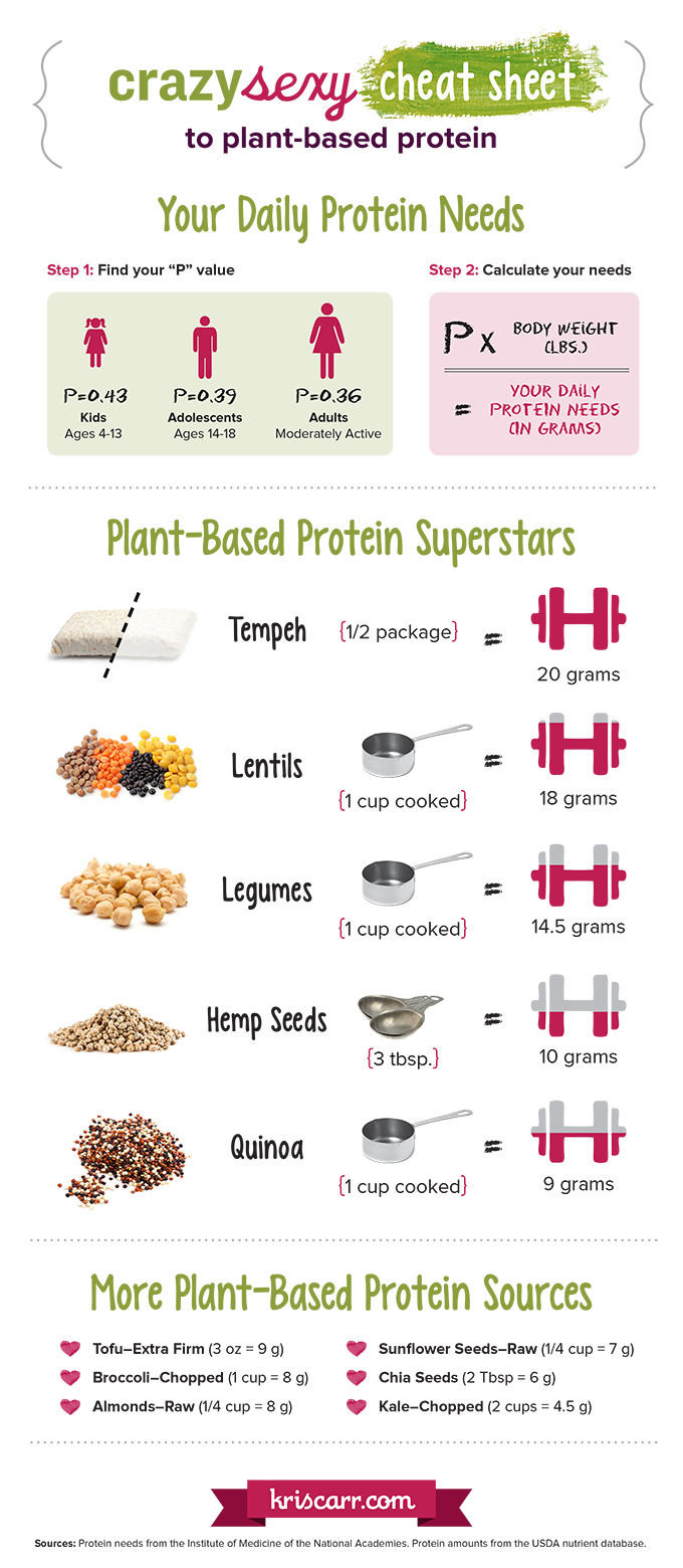 Guide to Plant-Based Proteins