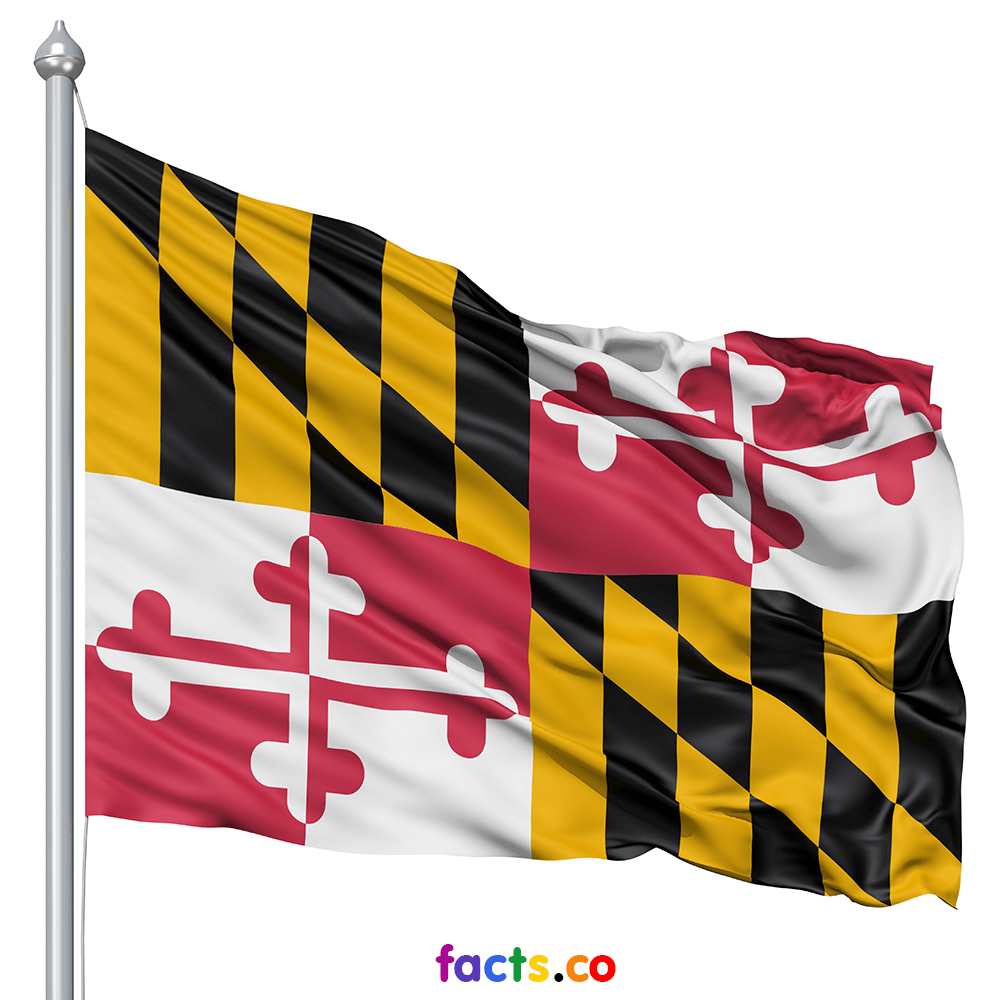 Maryland Flag Colors Maryland Flag Meaning Maryland Flag Flag Colors Us States Flags