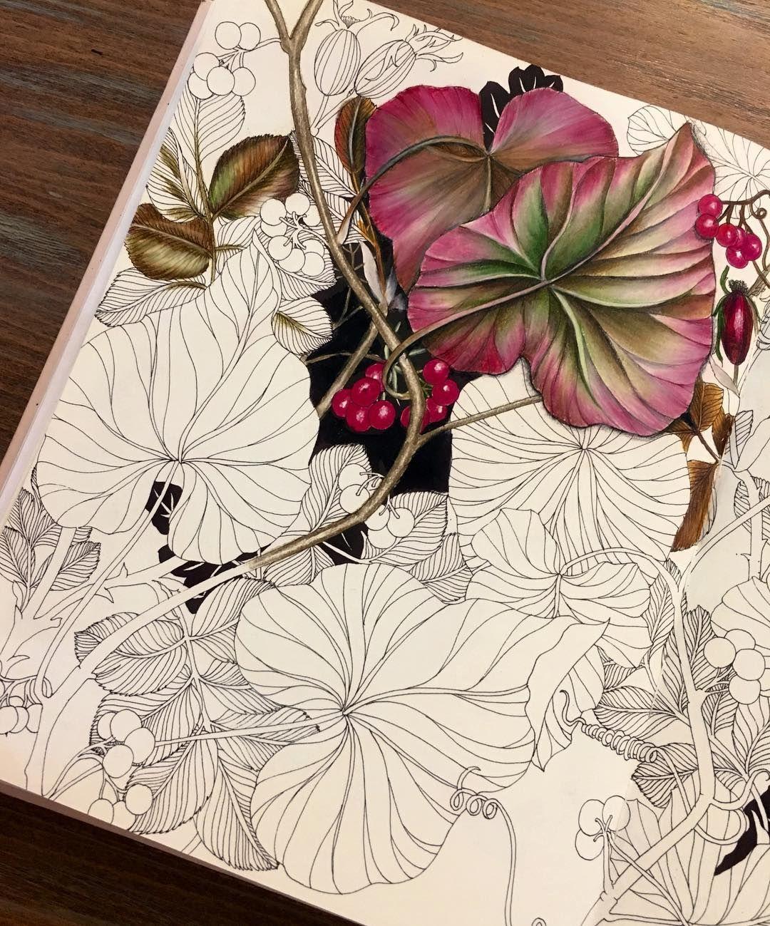 Instagram | pintura | Pinterest | Colorear, Pinturas y Dibujo