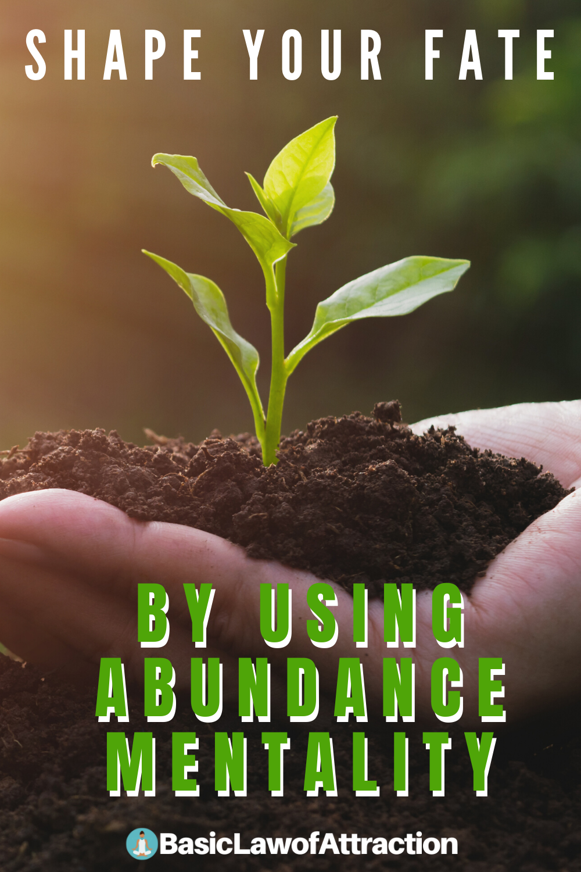 Natural Shape Abundance Bowl with Chunks - Salt Lamp - We