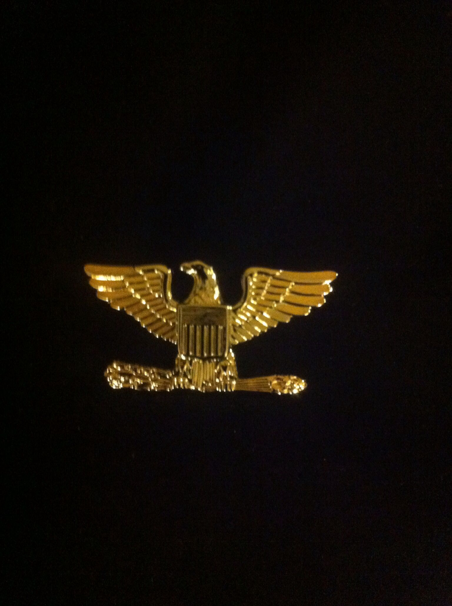 O6, Colonel Represented by a silver eagle (USN/USCG