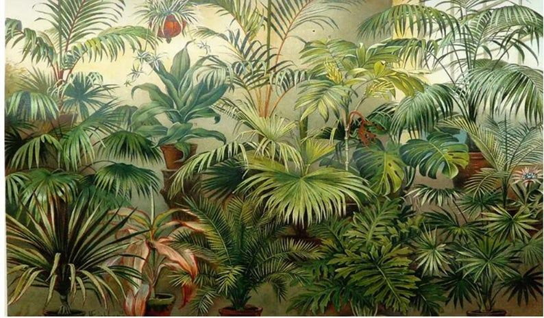 Custom Tropical Rain Forest Wall Mural Wallpaper Coconut