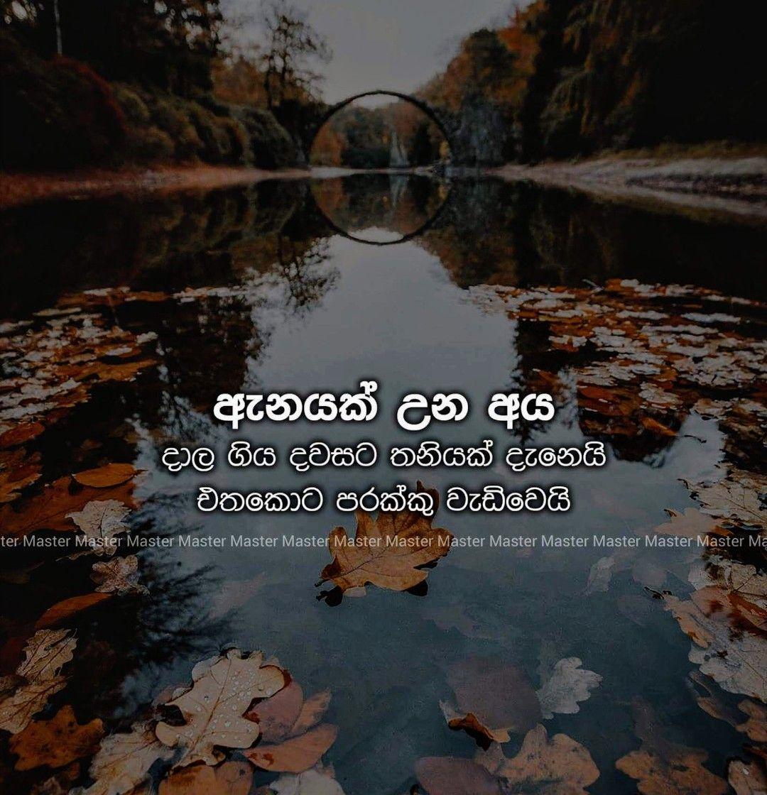 Birthday Wishes Nisadas Sinhala Friend