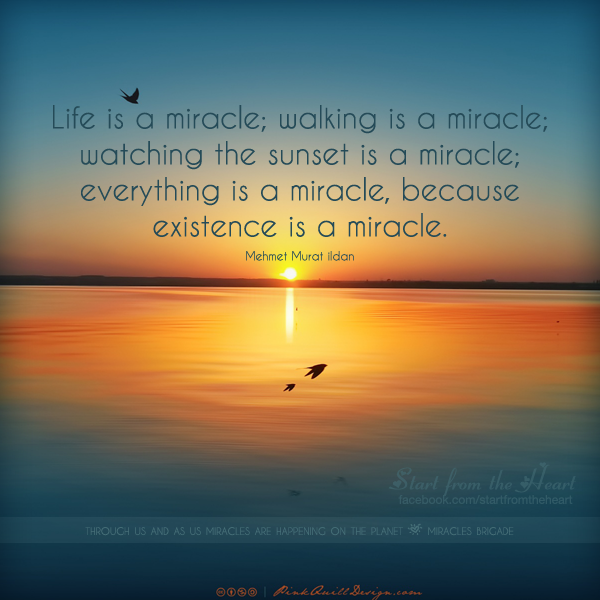 Life Is A Miracle Walking Is A Miracle Watching The Sunset Is A Miracle Everything Is A Miracle Because Existence Is A Mirac Adventure Quotes Life Miracles Life Is a Miracle