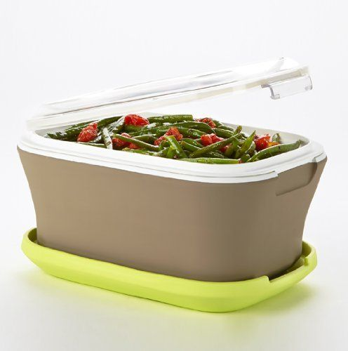 Fit Fresh Gatherings Indoor Outdoor Side Server 2qt Dish With Insulated Carrier
