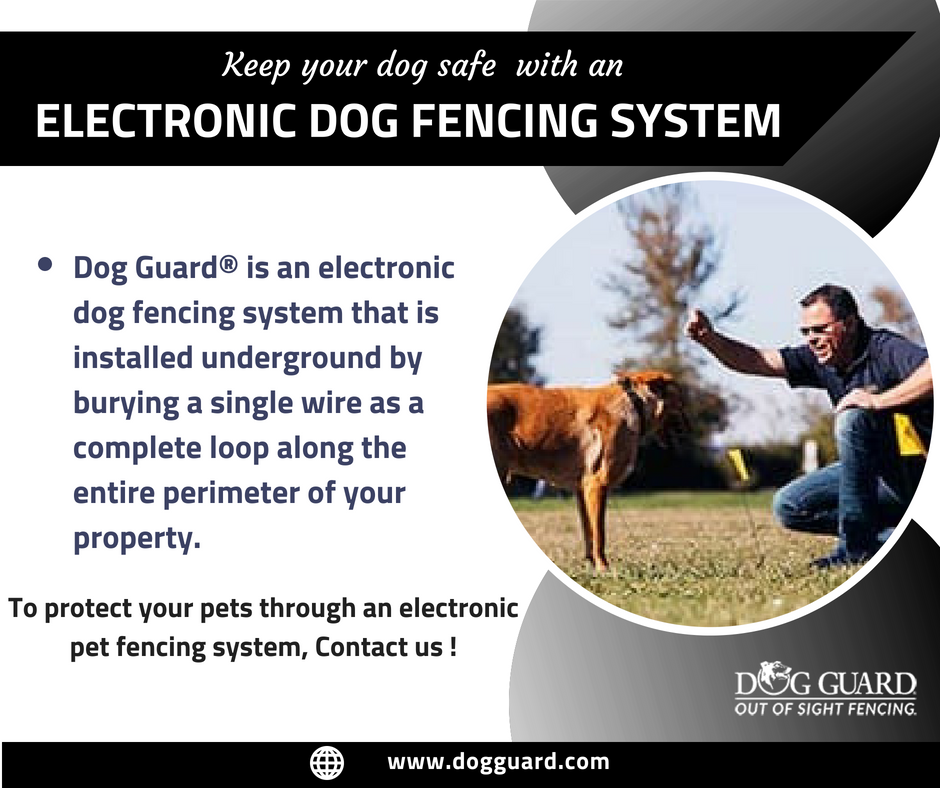 An electronic dog fencing system provided by Dog Guard is